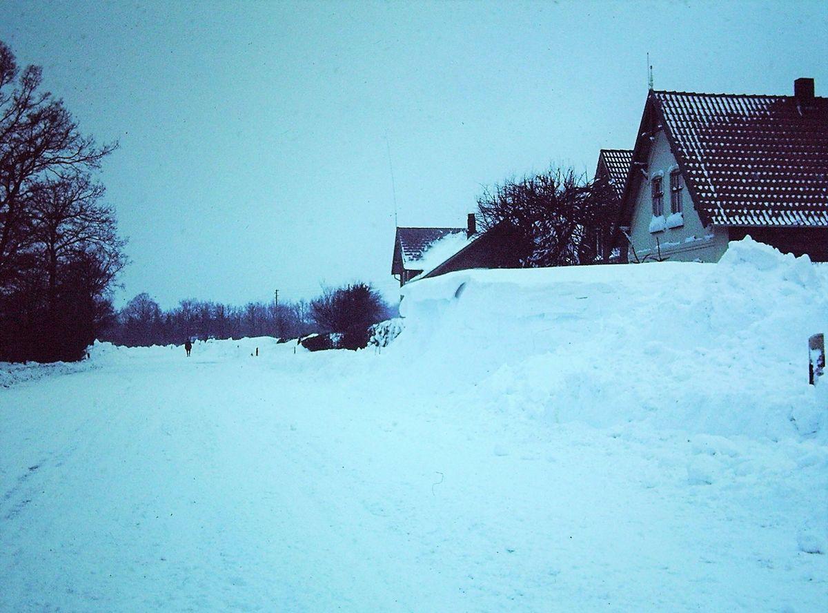 SchneekatastrophenG.jpg