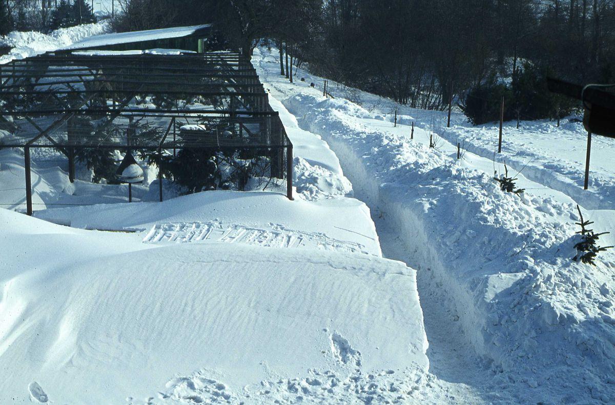 SchneekatastrophenM.jpg